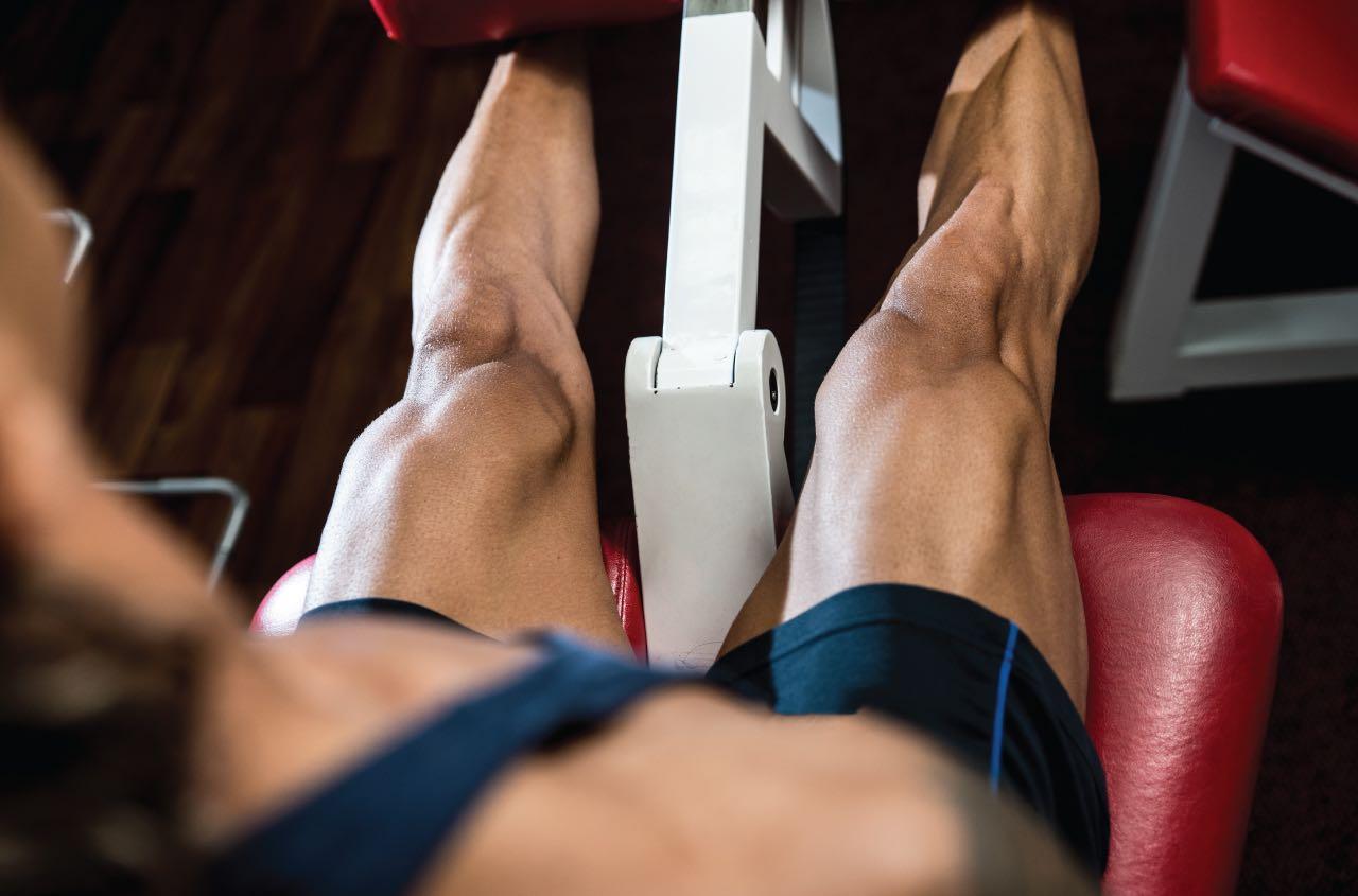 Leg Day Training